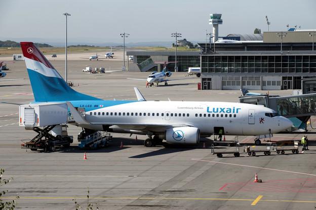 893.090 tonnes de marchandise ont été gérées par LuxairCargo en 2019, soit une baisse de 6,7% par rapport à l'année précédente. (Photo: Luxair Group)