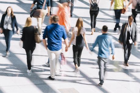 Avec les emplois indirects et induits, y compris dans d'autres secteurs, la Fondation Idea atteint 98.300 emplois. (Photo: Shutterstock)