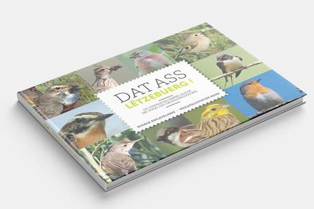 La 8e édition de «Dat ass Lëtzebuerg» met à l'honneur neuf oiseaux du Luxembourg remarquablement peints sur une série de timbres. (Photo: Post)