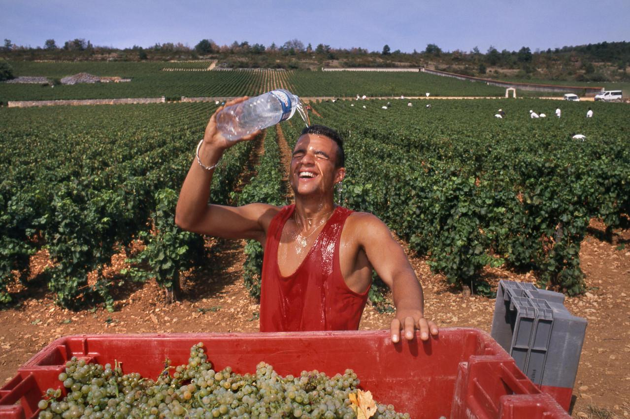 Quoi de mieux qu'un petit peu de shopping viticole bien renseigné pour débuter une saison gastronomique réussie? (Photo: Ian Shaw/Alamy Stock Photo)