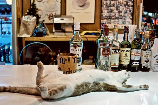 Vous préférez boire quelques coups à la fraîche plutôt que de retourner bosser un vendredi après-midi? On vous comprend! Et on vous aide, même… Mais à vos risques et périls! (Photo non contractuelle… enfin…) (Photo; Alamy Stock Pictures)