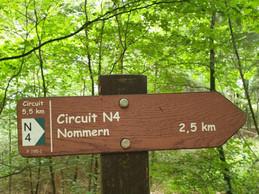 Vue du sentier de randonnée N4. ((Photo: Mullerthal.lu))