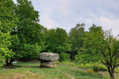 Le «champignon» est un rocher dont la formation remonte aux âges préhistoriques. (Photo: Mullerthal.lu)