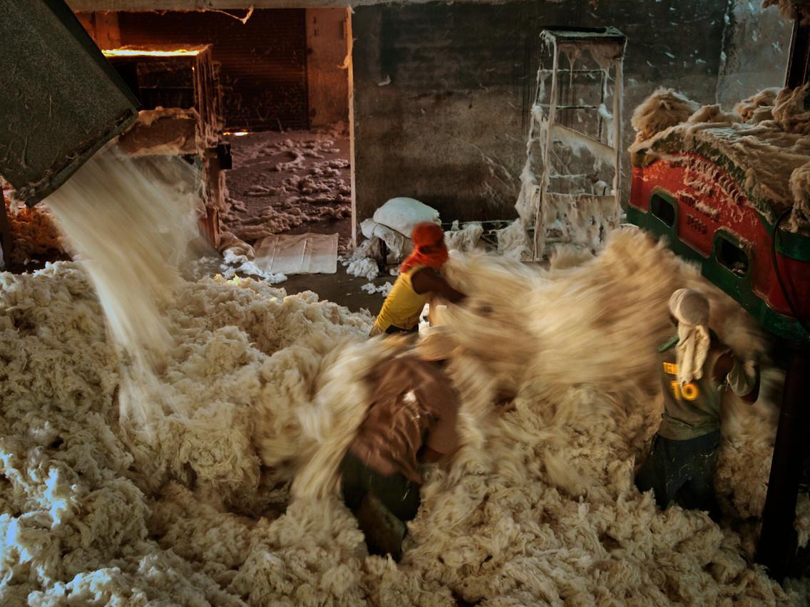 Dans la ville indienne de Yavatmal, la culture du coton permet aux ouvriers de cette industrie d'avoir accès à des congés payés, des congés pour raison médicale ou à un système de retraite. (Photo: Uwe H. Martin & Frauke Huber)
