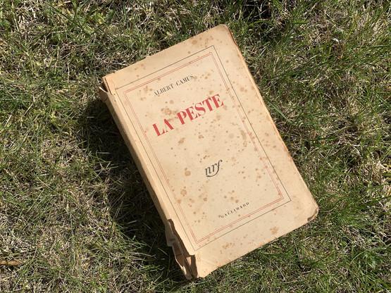 Avec son «cycle de la révolte» («La Peste», «L'Homme révolté», «Les Justes»), AlbertCamus remporte le prix Nobel de littérature en 1957. (Photo: Paperjam)