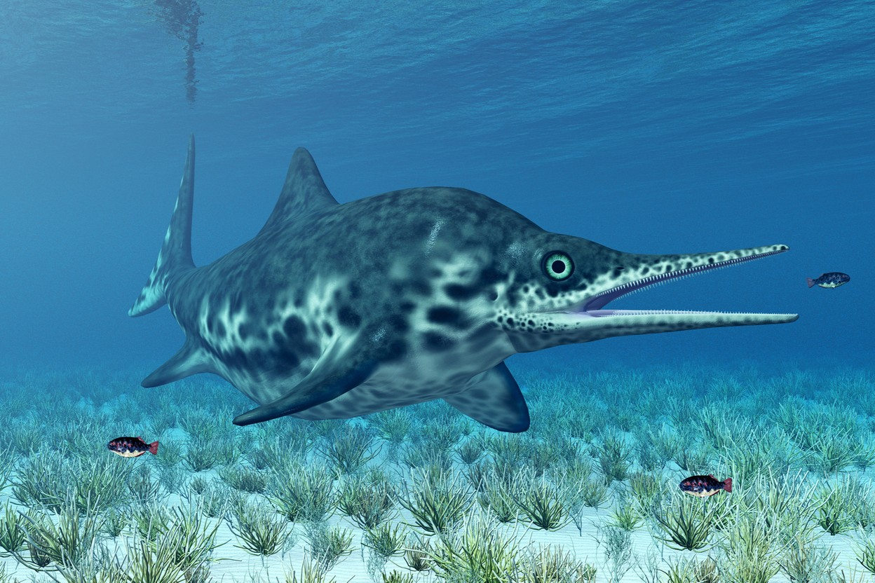 The ichthyosaur (lizardfish) could measure from 1 to 12 m in length, and was capable of swimming at 40km/h. The one discovered at the Cloche d'Or belongs to one of the largest subspecies. (Photo: Shutterstock)