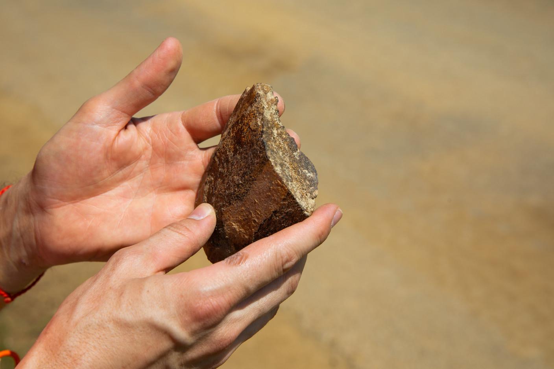 Bones that date back 190 million years. (Photo: Matic Zorman/Maison Moderne)