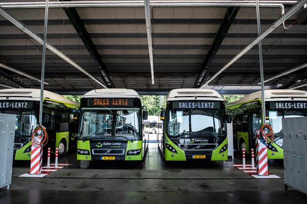 Le Covid-19 a mis à l'arrêt une grande partie des bus de Sales-Lentz, en particulier ceux qui servent au tourisme. (Photo: Anthony Dehez/Archives Paperjam)