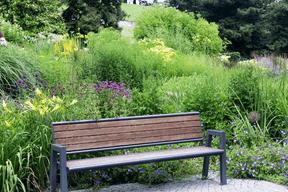 L'arboretum s'étend à travers les trois parcs publics du Kirchberg. ((Photo: Luxembourg for Tourism))