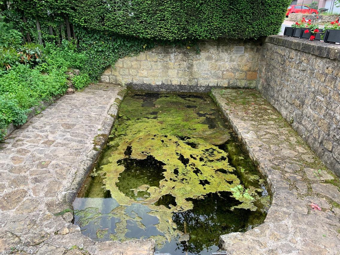 Le puits artésien de Syren (Photo: AnnaFox)