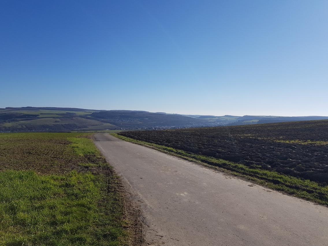Une des collines monstres, décrite par Anna Fox, où les coureurs peuvent faire de la roue libre de Manternach à Mertert. (Photo: AnnaFox)