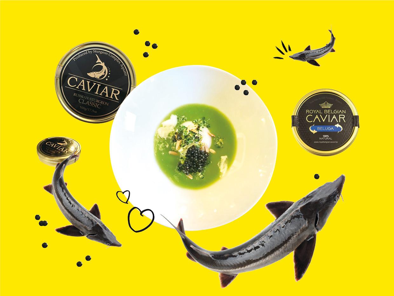 Les petits grains noirs qui font tant d'effet: le caviar continue à faire saliver les gourmets du monde entier! (Design: Marie Königsdörfer/Maison Moderne)