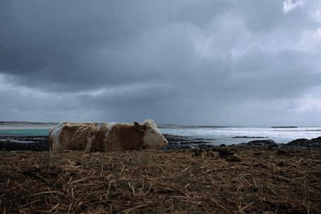Benji Kontz partage avec Paperjam sa passion pour la photographie. (Photo: Benji Kontz)