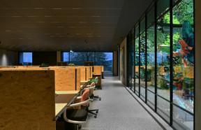 Les bureaux, aménagés en open spaces, disposent d'une vue vers le mur végétal. ((Photo: SergeBrison))