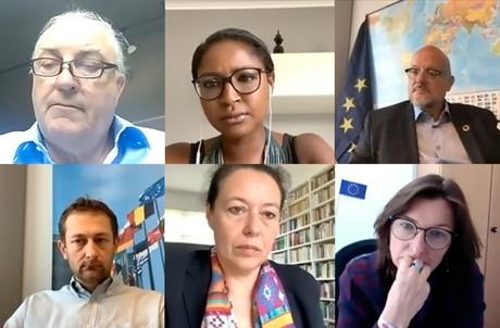 Charles Goerens, Monica Semedo, Marc Angel, Christophe Hansen, Isabel Wiseler-Lima et Tilly Metz ont rejoint le Parlement européen ou rempilé l'an dernier. (Capture d'écran: EPLO Luxembourg )