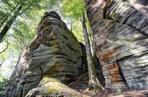Le grès luxembourgeoisconstituait voici plus de 200 millions d'années un fond marin. ((Photo:NGPM, Uli Fielitz))