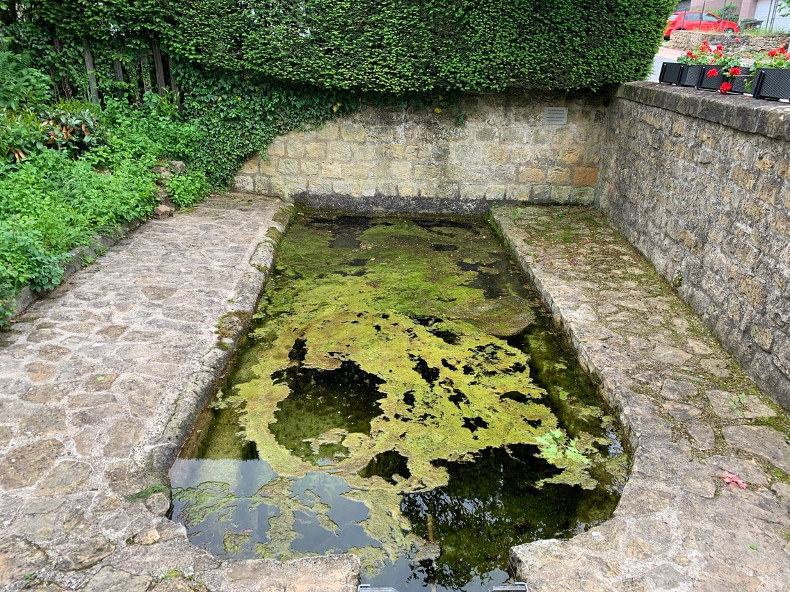 Theartesian well in Syren Anna Fox