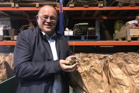 Le ministre de l'Agriculture Romain Schneider était présent lundi 7 octobre à Kalborn au sein de l'entreprise Cannad'Our, qui cultive notamment du chanvre industriel. (Photo: Paperjam)