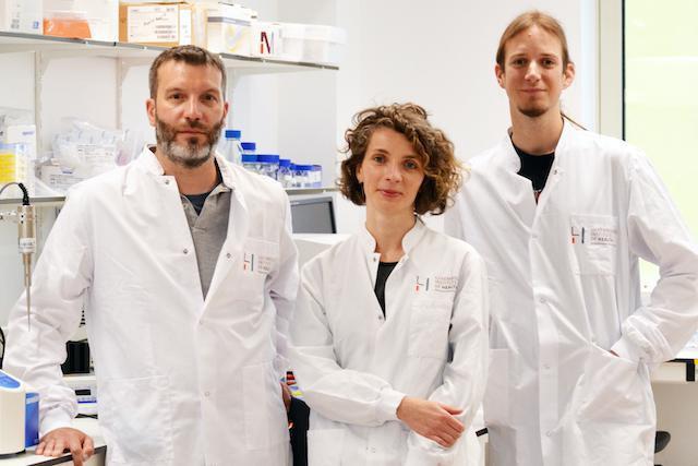 L'équipe de recherche du LIH, Andy Chevigné, Martyna Szpakowska et Max Meyrath. (Photo: LIH)