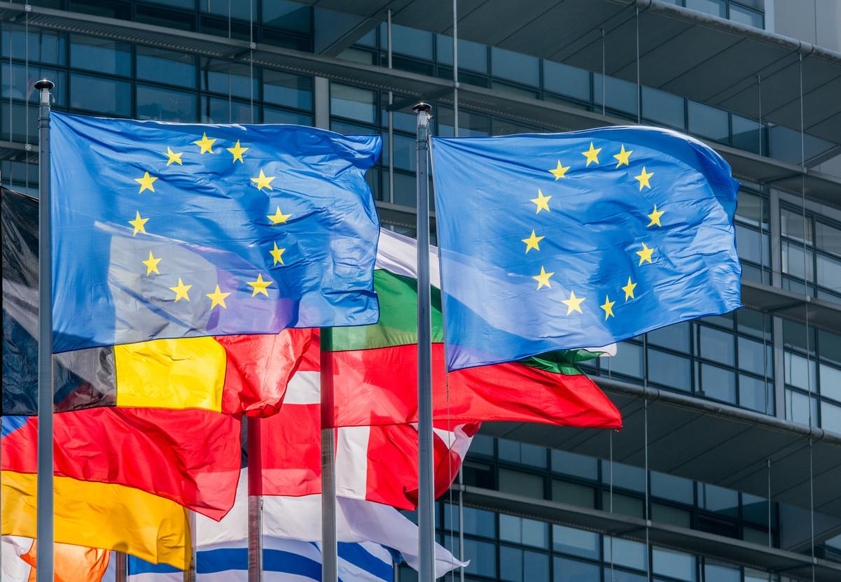 EU flags in Strasbourg Photo: Shutterstock