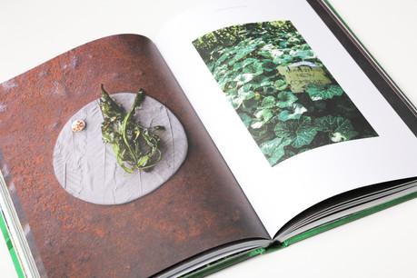 De superbes photos de plats, des histoires personnelles mais aussi des recettes: «Sun and Rain» lève le voile sur l'univers de la chef starAna Roš. (Photo: Romain Gamba/Maison Moderne)