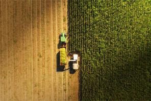 Alors que 44% de toutes les plantations sont perdues avant la récolte, le WWF estime que nous devrons produire plus de nourriture au cours des quatre prochaines décennies que pendant les 8.000ans d'histoire de l'humanité. (Photo: Shutterstock)
