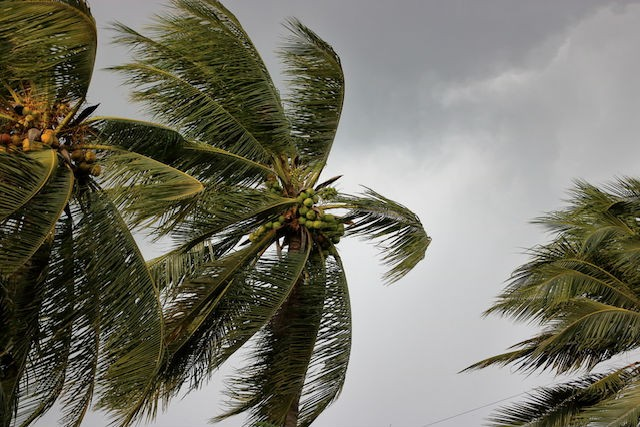 The rapidly changing climate means the destructive power of storms like Cyclone Idai is only going to increase in the future Shutterstock