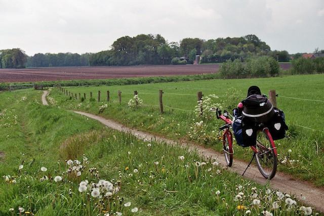 cycle-path-netherlands-may-17.jpg