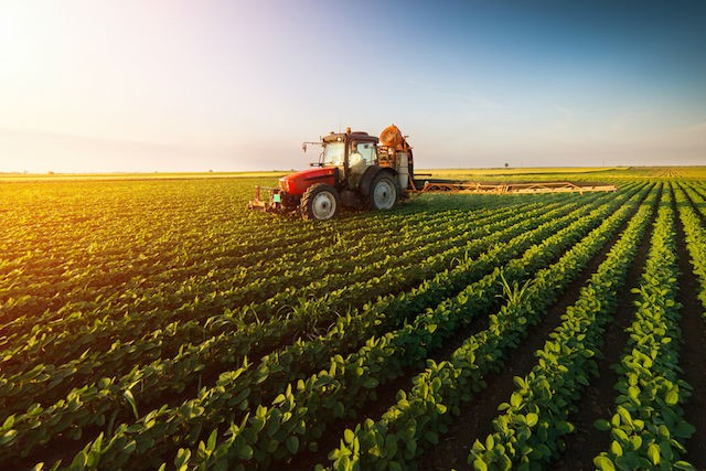 A worker sprays a field with pesticides. This view could be a thing of the past in Luxembourg if the country makes a full transition to 100% organic practices Shutterstock
