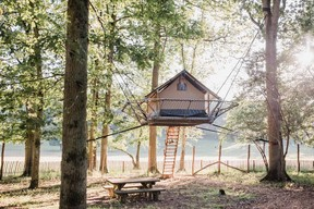 """The """"Tree Tent"""" is perched three metres high.  Domaine des Grottes de Han"""