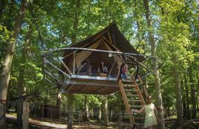 """The """"Tree Tents"""". Domaine des Grottes de Han"""