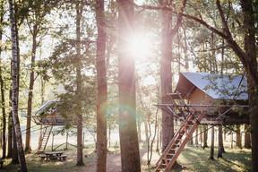 The Tree Tents.  Domaine des Grottes de Han