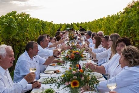 Les artisans vignerons sont au centre de la nouvelle gamme de Domaines Vinsmoselle. (Photo: Domaine Vinsmoselle)