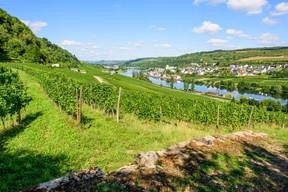 La tour se situe aussi sur la route du vin, au bord de la Moselle. ((Photo: Paperjam.lu))