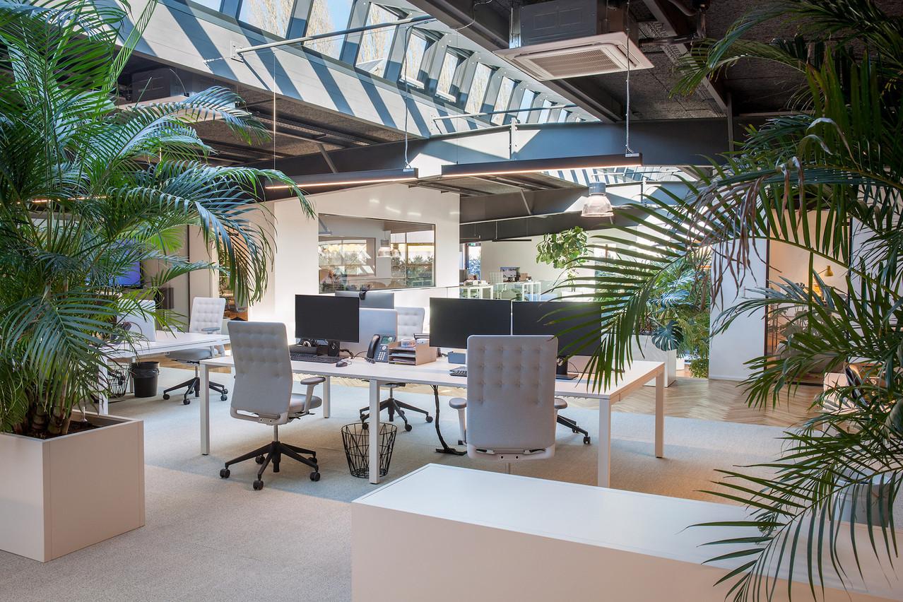 Les bureaux conservent le caractère industriel de l'ancienne halle. (Photo: Steve Troes Fotodesign)