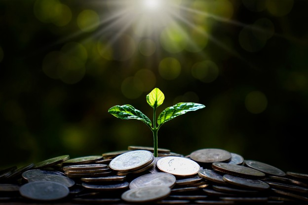 L'investissement durable semble ne pas être touché par les différentes crises que traverse le monde. (Illustration: Shutterstock)