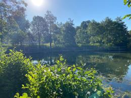 Le lac est le point de départ de nombreuses randonnées à vélo ou à pied. ((Photo: Paperjam))
