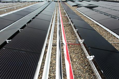 Les partenariats avec des entreprises luxembourgeoises se multiplient pour produire de l'électricité à l'aide de panneaux photovoltaïques. (Photo: Paperjam / archives / Matic Zorman)