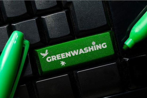 42% des allégations environnementales trouvées sur des sites web d'entreprises sont exagérées, fausses ou fallacieuses, selon la Commission européenne. (Photo: Shutterstock)