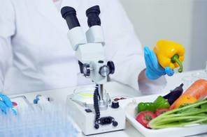 Les investissements dans les start-up de protéines alternatives, comme l'agriculture cellulaire ou les aliments à base de plantes, ont pour sûr augmenté de 178% en 2020. (Photo: Shutterstock)
