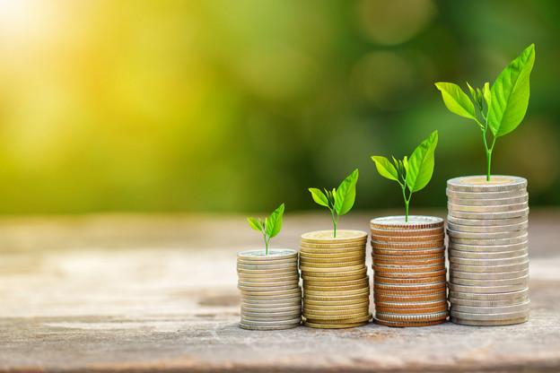 Pour les investisseurs comme pour les investis, le private equity a ses avantages comme ses inconvénients, qu'il est important de connaitre avant de se lancer. (Illustration: Shutterstock)