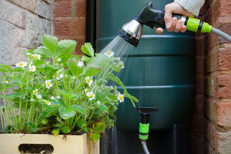 Pour recueillir l'eau de pluie – bien meilleure pour les plantes que l'eau du robinet, car elle contient moins de calcaire –, il suffit de détourner l'eau de votre tuyau d'évacuation dans des citernes. (Photo: Shutterstock)
