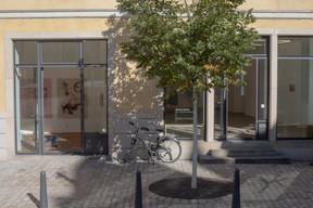 Fellner Contemporary est voisine de Nosbaum Reding Gallery. ((Photo: Matic Zorman / Maison Moderne))