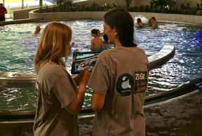 216K et Aquasud ont lancé, début mai, un escape game dans l'eau. ((Photo: 216K))
