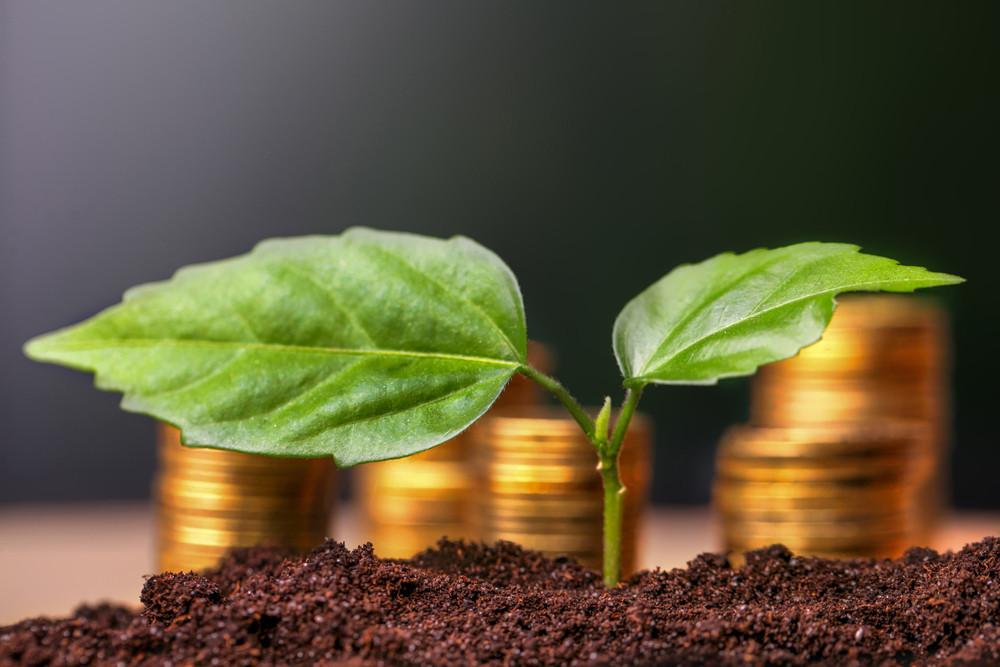 Les dirigeants de la finance au Luxembourg veulent marquer la Place d'une empreinte verte. (Photo: Shutterstock)