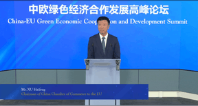 Xu Haifeng, chairman of the China Chamber of Commerce to the EU, is seen in a screengrab taken during the China–EU Green Economic Cooperation and Development Summit, 8 July 2021. Bank of China Luxembourg