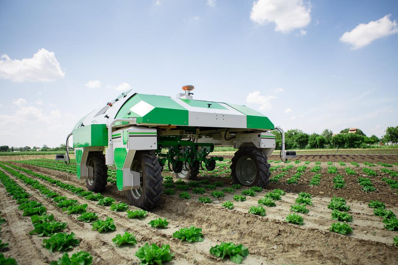 La technologie se met au service de l'agriculteur avec, ici, un robot pour le désherbage des cultures. (Photo: Tien Tran/Hans Lucas)