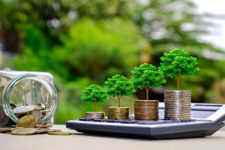Kelly Hebert: «Les fonds ESG ont effectivement mieux résisté à la crise actuelle.» (Photo: Shutterstock)