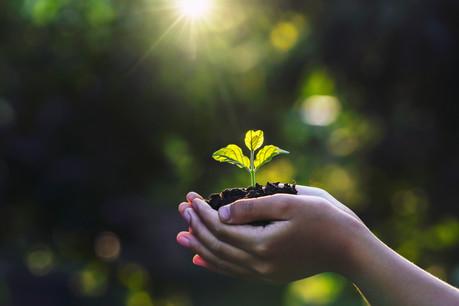 Lutter contre l'impact washing et défricher de nouveaux territoires sont les tendances de fond qui traversent le secteur. (Illustration: Shutterstock)