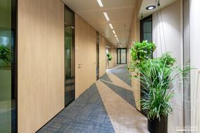 La linéarité du couloir est cassée par des moyens modestes, mais efficaces. ((Photo: Gaël Lesure))